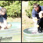 Baptism collage